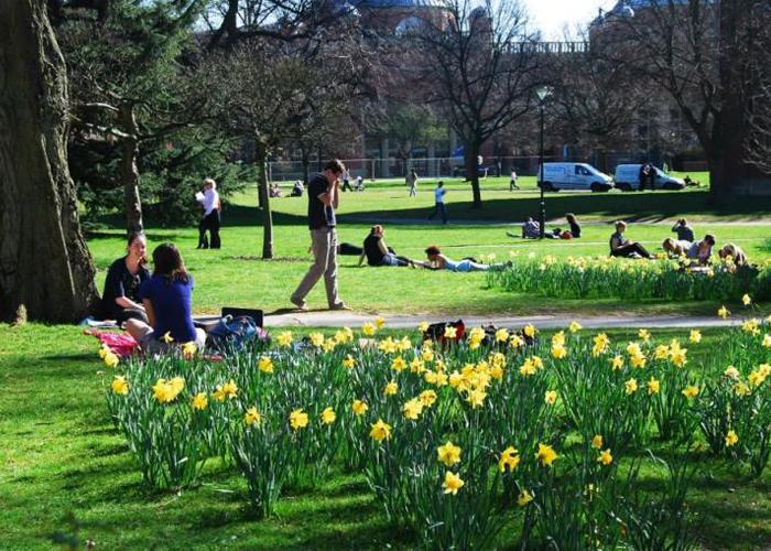 Publik Park